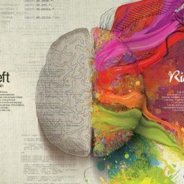 Une histoire de Créativité