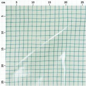 Tissu enduit menthe et carreaux  verts (x10cm)