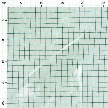 Tissu enduit hygge menthe et carreaux tracés verts RICO D