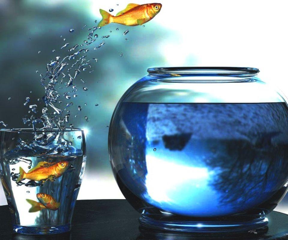 ne plus se noyer dans un verre d'eau