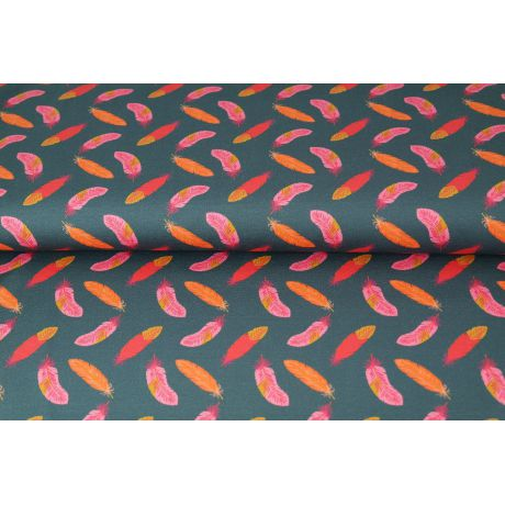 Tissu Jersey Stenzo plumes flamboyantes