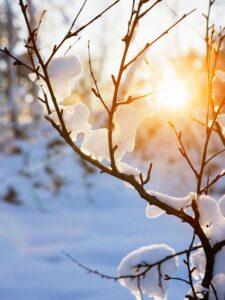 Neige en décembre - Avent à la Boutik creative de Rives