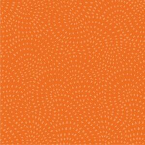 Tissu coton Dashwood Twist pumpkin (x10cm)
